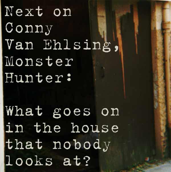 New Conny Van Ehlsing, Monster Hunter story!